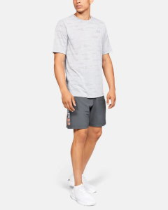 Шорты Under Armour UA Woven Wordmark Shorts 1320203-012